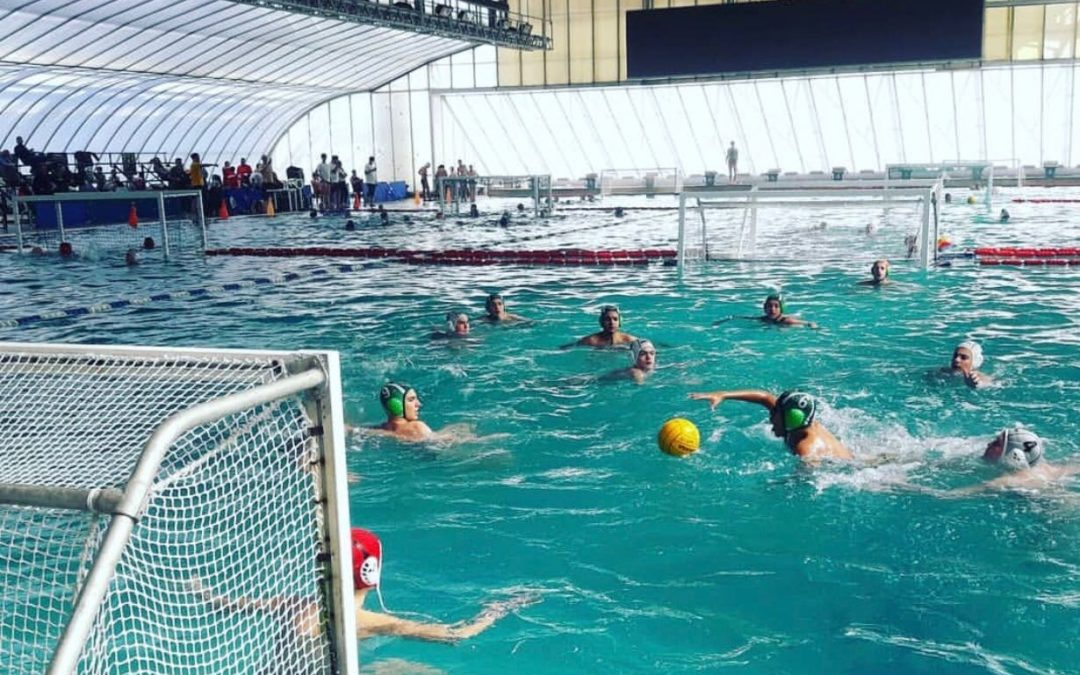 Waterpolo_Infantil.jpeg